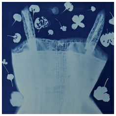 """Apparition in the Gardens"" from  Jen's cyanotype muse website."