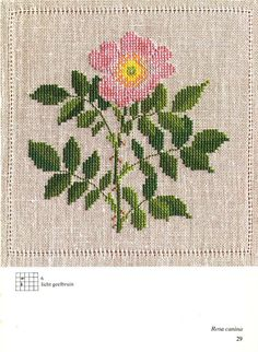 ru / Фото - Cross Stitch Pattern in Color - Mosca Embroidered Roses, Rose Embroidery, Cross Stitch Embroidery, Cross Stitch Patterns, Just Cross Stitch, Cross Stitch Flowers, Embroidery Techniques, Cross Stitching, Needlework