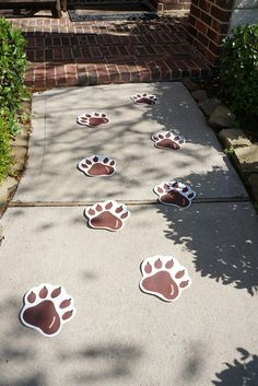 A set of 8 hand painted paw prints perfect for your Brown Bear, Brown Bear party! Our favorite way to use these paw prints is to line an outdoor or indoor walkway as an adorable welcome for guests. Size- Approximately 7x7 Check out our: Brown Bear, Brown Bear Animal Set: http://etsy.me/2oDUlU0 And our Brown Bear, Brown Bear food labels: http://etsy.me/2pG2nco