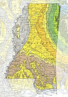 An overview of the specific geology for each of the 50 U. States, official state geologic maps, and links to additional resources. Stereographic Projection, United States Map, 50 States, Knight In Shining Armor, Hero's Journey, Old Maps, Historical Maps, Mississippi, City Photo