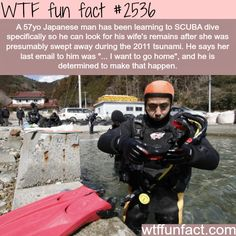 WTF Fun Facts is updated daily with interesting & funny random facts. We post about health, celebs/people, places, animals, history information and much more. New facts all day - every day! Wtf Fun Facts, Funny Facts, Crazy Facts, Random Facts, Random Stuff, The More You Know, Did You Know, Learn To Scuba Dive, Interesting History