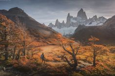 Patagonia autumn - Let me continue the story about our Patagonia expedition. Almost all week we camped under Fitzroy we had sunny days. Sometimes they were even too sunny with even no sign of a single cloud! Last year we did not even see the tops for several days: they were covered with clouds. But this year the stereotype about Patagonia severe weather was ruined for a while. Probably only until we were caught in snow storm after a week of sunny weather ;) Danielkordan.com
