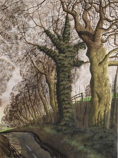 'Dykes Hill' by Simon Palmer (watercolour, ink and gouache) Forest Sunset, Tree Artwork, Landscape Artwork, Nature, Scenery, Art Gallery, Fine Art, Landscaping, Film