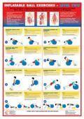Balance Ball Exercises Poster