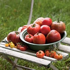 How to Grow Heirloom Tomatoes - Southern Living