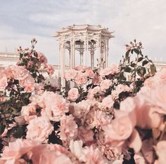 "Find and save images from the ""myth:Afrodita//Greek Gods Aes"" collection by Chase (Lenannie) on We Heart It, your everyday app to get lost in what you love. Spring Aesthetic, Flower Aesthetic, Aesthetic Fashion, Aesthetic Pastel Pink, Rose Gold Aesthetic, Aphrodite Aesthetic, Tout Rose, Princess Aesthetic, Queen Aesthetic"