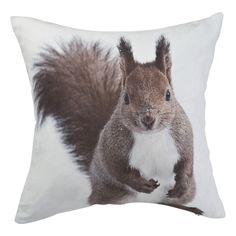 Buy Red Squirrel Cushion | Cushions | The Range
