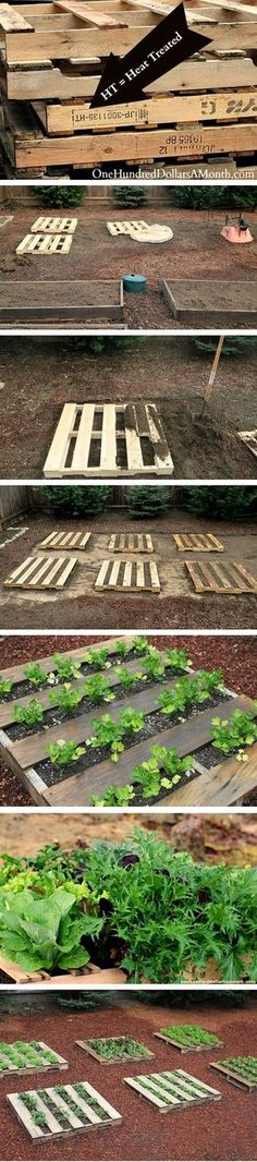 Pallet gardening by Luci