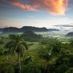 #UNESCO La natura maravilliosa - #Viñales #CUBA #KUBA The Viñales valley is encircled by mountains and its landscape is interspersed with dramatic rocky outcrops. Traditional techniques are still in use for agricultural production, particularly of tobacco. The quality of this cultural landscape is enhanced by the vernacular architecture of its farms and villages, where a rich multi-ethnic society survives, illustrating the cultural development of the islands of the Caribbean, and of Cuba.