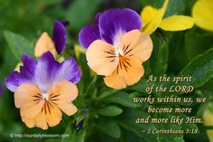 2 Corinthians 3:18b — a word from The Sponsor~June 1 ||| Because Of Grace