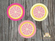 Pink Lemonade Party Printables by blush printables, via Flickr
