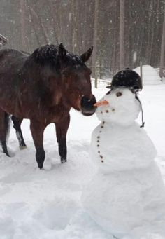 It's like Sven and Olaf! :S :-D