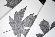 Leaf illustrations