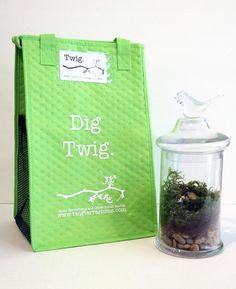 From Twig Terrariums, DIY Moss Terrarium Kit