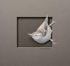 Fine wildlife paper sculptures by paper artist Calvin Nicholls.|CutPaste Studio| Art, Artist, Artwork, Entertainment, Beautiful, Creativity, Illustration, sculptures, nature, Paper art, Wildlife.
