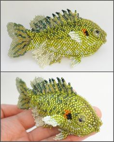 Redear fish by Rrkra.deviantart.com on @deviantART
