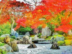 ✩ ° ° ° 🍁紅葉✖️日本庭園🍁 ° ° ° Location:Kyoto(Shōgunzuka mound) 京都(将軍塚) Camera:Nikon P900 ° ° 人がいなくなる瞬間を狙い撃ち🔫 (′ω' 🔫)バキュン あっちへウロウロ… こっちへウロウロ… あっちをキョロキョロ👀✨ こっちをキョロキョロ👀✨ 迷子やおまへん😅 ° ° ° ° ° #special_spot_ #土曜日の小旅行 #art_of_japan_ #japan_daytimeview #japan_of_insta #team_jp_秋色2017 #icu_japan #wp_紅葉2017 #wu_japan #tokyocameraclub #jp_gallery #はなまっぷ紅葉2017 #Lovers_Nippon_2017秋コン #loves_nippon #けしからん風景 #whim_life #nipponpic_秋たけなわ2017 #bnwcsc_lovers_jp #ig_japan #IGersJP #instagramjapan…