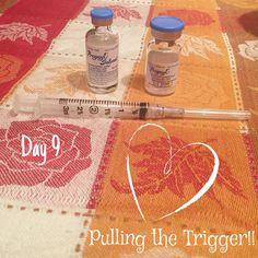 IVF w/PGD Stims Medication & Trigger Shot. IVF Blog