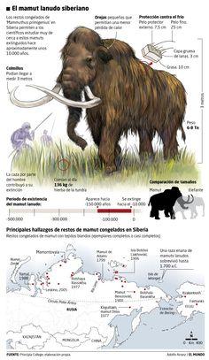 Mamuts-Siberia