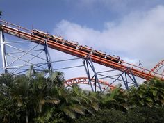 Beto Carrero World (Penha) - O que saber antes de ir - TripAdvisor Beto Carrero World, Golden Gate Bridge, Utility Pole, Trip Advisor, Attraction, 1, Travel, Santa Catarina, People