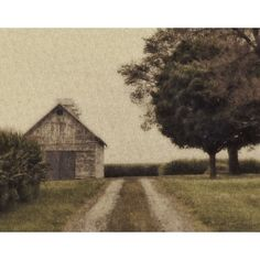 August in the Country from Emergent Light Studio from $90.00 on Square Market