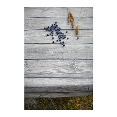 In the summer spirit, new nautical theme cooking and eating accessories from IKEA. This is the SOLFINT tablecloth that gives any table a real 'beachy' wood look.