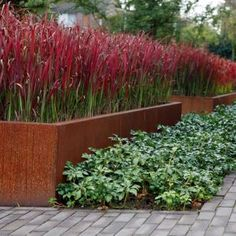 Corten Steel trough planters from Garden House Design in Sussex. A stunning enhancement to any outdoor space. Trough Planters, Corten Steel, Land Scape, Home And Garden, House Design, Water, Neue Trends, Plants, Outdoor