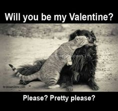 valentine dog name