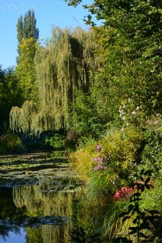 Claude Monet's gardens - Giverny