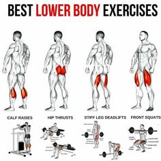 Best Lower Body Exercises Healthy Fitness Workout Plans Tips - Yeah We Train ! Fitness Workouts, Weight Training Workouts, Fitness Motivation, Fitness Icon, Gym Fitness, Bodybuilding Training, Bodybuilding Workouts, Bodybuilding Motivation, Gym Workout Chart