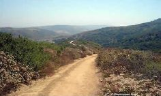 Aliso & Wood Canyon Wilderness Park