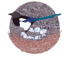 Tom Berry Bird Illustration