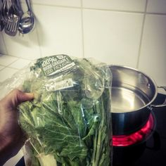A bag full of kale. Taste Testing Online Food Markets  #foodie #organic http://tigerbel.blogspot.com/2015/06/foodie-or-faddy-taste-testing-online.html?m=1