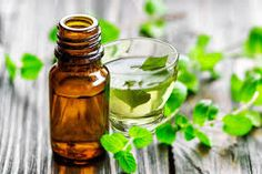 Essential oil companies can't promote essential oils for pain, but researchers have been studying their effects. Essential Oils For Pain, Tea Tree Essential Oil, Orange Essential Oil, Peppermint Oil Benefits, Peppermint Plants, Mild Shampoo, Baby Shampoo, Growing Mint, Oil For Hair Loss
