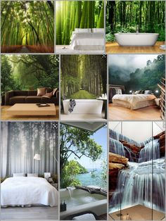 Forest / Bamboo wallpaper bedroom/bathroom ideas