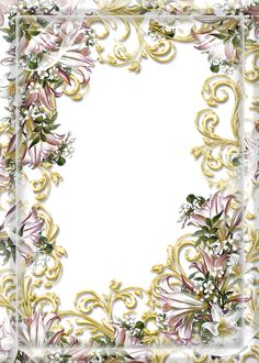 Transparent PNG Photo Frame with Flowers
