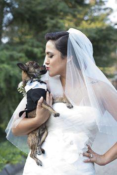 Puppy love | Burtch Photography
