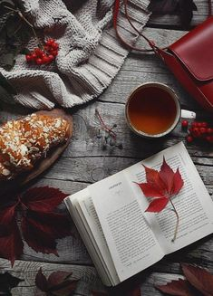Flatlay Inspiration · via Custom Scene ·Grey and Red scene on wooden background with red autumn leaves and berries. Autumn Photography, Book Photography, Autumn Aesthetic Photography, Photography Lighting, Product Photography, Hygge, Fall Inspiration, Engagement Inspiration, Autumn Cozy