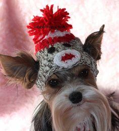 Sock Monkey Dog Hat by valygal on Etsy, $10.00