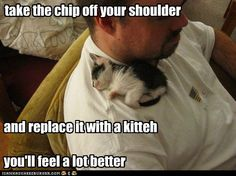 Adorable!!!! Take the chip off your shoulder and replace it with a kitten :)