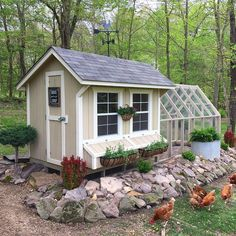 Building A DIY Chicken Coop If you've never had a flock of chickens and are considering it, then you might actually enjoy the process. It can be a lot of fun to raise chickens but good planning ahead of building your chicken coop w Cute Chicken Coops, Best Chicken Coop, Chicken Coop Designs, Backyard Chicken Coops, Chicken Coop Plans, Building A Chicken Coop, Chickens Backyard, Chicken Coop With Run, Fancy Chicken Coop