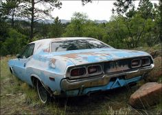 "1972 Dodge Challenger - ""This Rallye Challenger is sitting in the backwoods of the Rocky Mountains in Colorado. It's been sitting there for at least 15 years. Of course, the owner insists that he's going to restore it someday. In the meantime, local animals continue to use the interior as a build-to-suit condo!"""