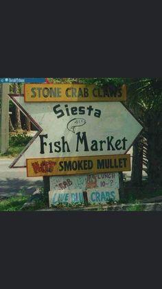 Stone Crab, Sarasota Florida