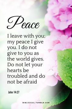 """bibligical: """"Peace I leave with you; my peace I give you. Do not let your hearts be troubled and do not be afraid. Biblical Words Of Encouragement, Biblical Quotes, Bible Verses Quotes, Bible Scriptures, Faith Quotes, Spiritual Quotes, Christian Comics, Christian Quotes, Bible Verse Search"""