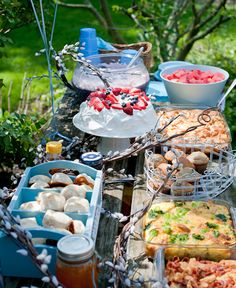 Party outdoors - food ideas