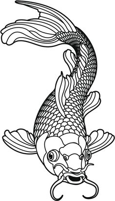 Image result for cat fish drawing
