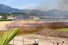Bei einem Flurbrand in der Stadt Salzburg ist am Dienstag eine etwa ein Hektar große Fläche abgebrannt. Die Berufsfeuerwehr hatte den Brand rasch unter Kontrolle.
