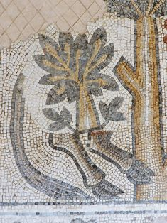 Helen Miles Mosaics explores the untold story of the ancient world's lost mosaics and examines the reasons for their destruction. Rare Orchids, Interior And Exterior, Bohemian Rug, Vintage World Maps, Jordans, Photo Galleries, Gallery, Byzantine Mosaics, Inspiration