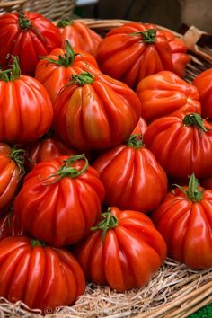 Heirloom Tomatoes at a Parisian Market