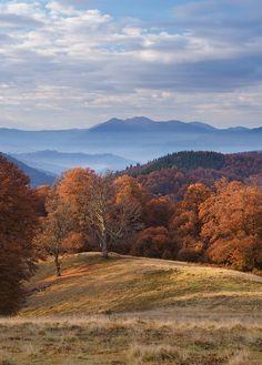 Carpathians. Ukraine photo Sergey Polyushko